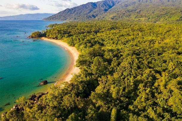 Parque Nacional de Masoala en la moderna Madagascar. (Reto / Adobe stock)