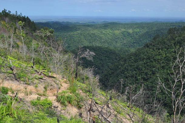 Montañas Mayas, Belice, donde se realizó el trabajo de campo para el estudio del maíz. (Pgbk1987 / CC BY-SA 2.0)