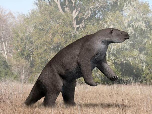 Megatherium americanum, perezoso gigante. (Nobu Tamura / CC BY SA 4.0)