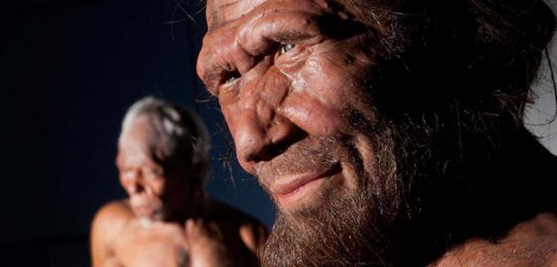 Un modelo de Neanderthal de la exposición Gran Bretaña de un millón de años de la historia humana (Museo Nacional de Historia)