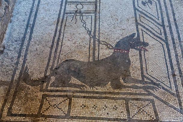 """Un famoso mosaico de Pompeya que podría convertirse en miles de artefactos de Pompeya """"malditos"""", si creías en la mala suerte y el oscuro destino. (Sergii Figurnyi / Adobe Stock)"""