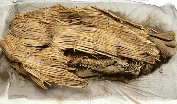 La momia descubrió. (friendsofpast.org)