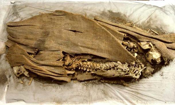 Otra foto de la momia descubierta por los Wheeler. (friendsofpast.org)