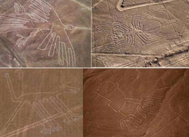 Colección de geoglifos de Nazca entre los que están el colibrí (parte superior izquierda) y el mono (parte inferior izquierda).