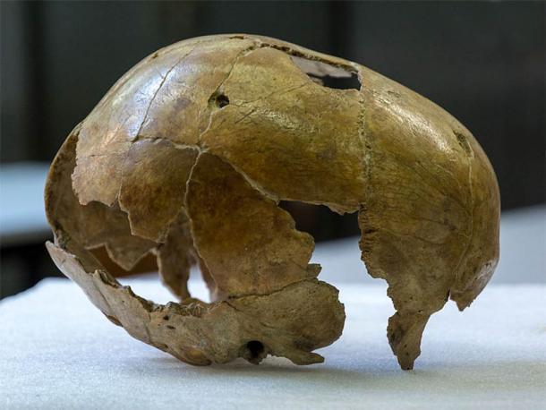 La cuestión de qué causó la desaparición de los neandertales ha estado preocupando a los científicos desde que los primeros restos neandertales fueron descubiertos en 1829 por el naturalista holandés Philippe-Charles Schmerling en Bélgica. (Thilo Parg / CC BY-SA 3.0)