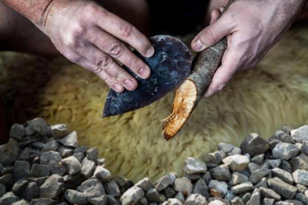 ¿Los neandertales les enseñaron a los humanos cómo hacer herramientas? (Andy Ilmberger / Adobe Stock)