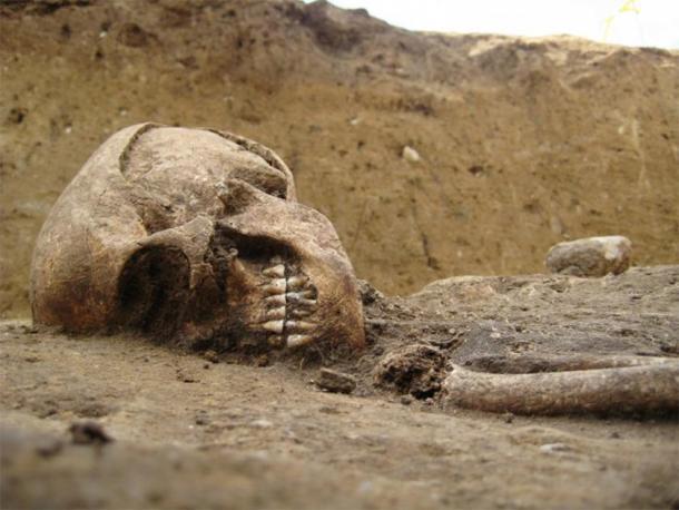 Este esqueleto neolítico de una mujer fue encontrado enterrado en posición fetal en Alemania. (Imagen: Archaeros)