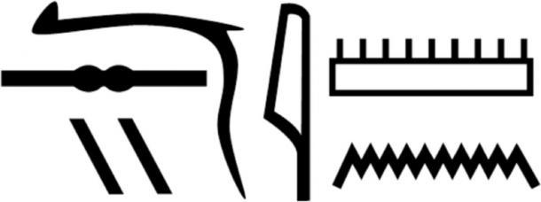 El nombre de Nesyamun en jeroglíficos como se muestra en sus inscripciones de ataúd. (Informes científicos)
