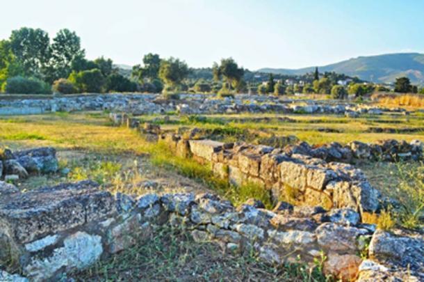 Paisaje de la antigua ciudad de Eretria (photo_stella / Adobe Stock)