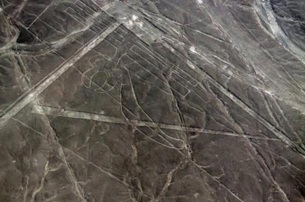 pajaro geoglyfo Nazca.jpg