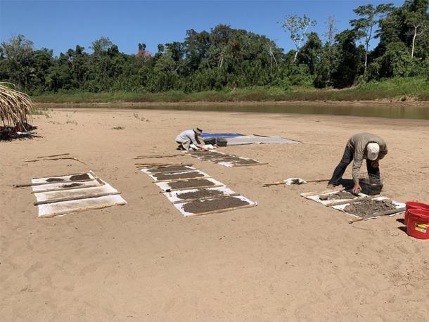Los paleontólogos secan el sedimento recolectado del sitio de Santa Rosa donde se encontró Ucayalipithecus, en el Perú amazónico. (Erik Seiffert)