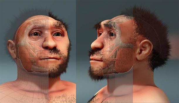 Una reconstrucción del Hombre de Pekín u Homo erectus pekinensis, un ejemplar de Homo erectus encontrado en China que data de hace aproximadamente 750.000 años. (Cicero Moraes/Dominio público)
