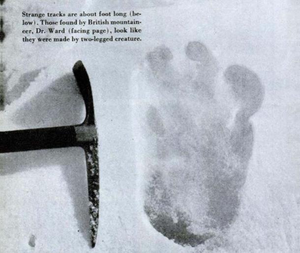 Fotografía de una supuesta huella de yeti encontrada por Michael Ward. La fotografía fue tomada en el glaciar Menlung en la expedición al Everest por Eric Shipton en 1951. (Dominio público)