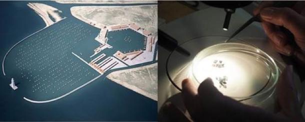 (l) Reconstrucción digital de Portus Romae. Crédito de la imagen: Proyecto Portus / Artas Media (r) granos de trigo carbonizados de 1.700 años de antigüedad de Portus Romae. Crédito de la imagen: L. Bonner