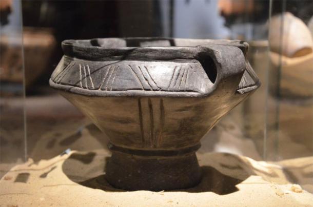 Urna funeraria de Przeworsk. (Silar / CC BY SA 3.0)