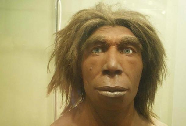 Reconstrucción de lo que pudo haber sido un neandertal en el Museum für Naturkunde, Berlín, Alemania. (כ.אלון / CC BY SA 3.0)