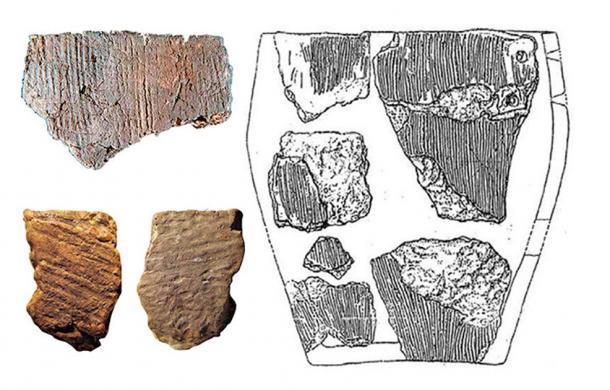 Reconstrucción del recipiente de cultivo Osipovka (derecha) y fragmentos de maceta encontrados en Gasya y Khummi (izquierda). (Imágenes: Vitaly Medvedev, Oksana Yanshina / The Siberian Times)