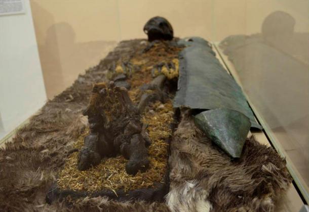 De manera similar se halló a un hombre pelirrojo que estaba protegido desde los pies hasta el pecho por una lámina de cobre. En su lugar de reposo había un hacha de hierro, pieles, y una hebilla de bronce que llevaba un oso grabado.