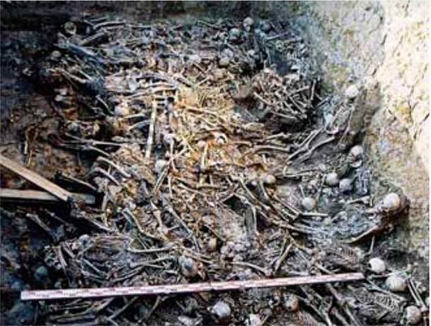 Restos de 200 cuerpos momificados encontrados en uno de los túmulos funerarios de Tagar en Belaya Gora. (Imagen: A. Poselyanin)