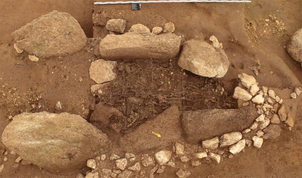 Restos encontrados en un sitio de excavación utilizado en el estudio, que ha revelado pistas sobre la migración de la Cultura Yamnaya a Europa. (Marianne Ramstein / Archäologischer Dienst des Kanton Bern)
