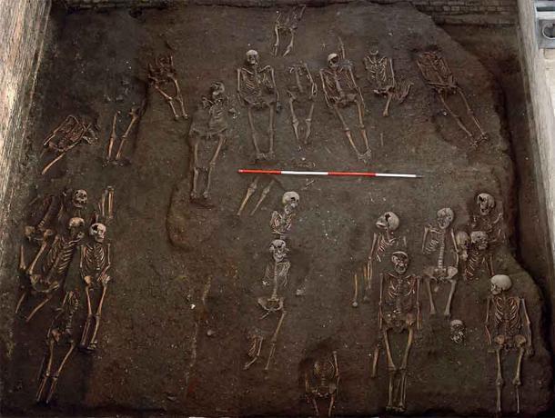 Los restos de muchos individuos enterrados en el convento agustino. (Universidad de Cambridge)