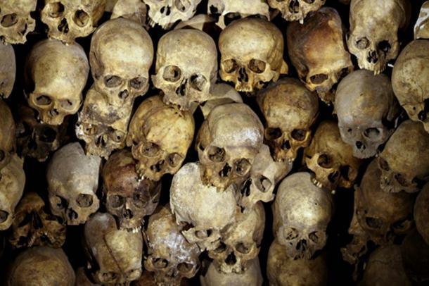 Imagen representativa de cráneos humanos. ¿Cuántos casos más han sufrido un despido similar por sus circunstancias anómalas? (CC0)