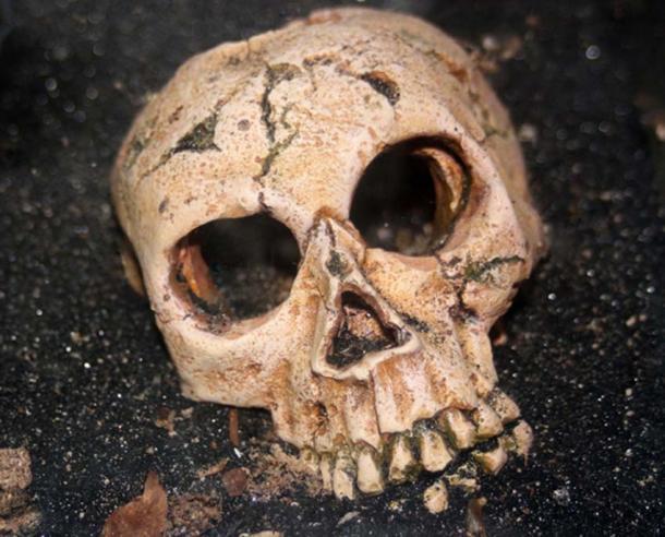 """Imagen representativa. """"Los huesos de un hombre fueron encontrados recientemente en un lecho de carbón cubierto con dos pies de roca de pizarra, noventa pies debajo de la superficie de la tierra"""". (CC0)"""
