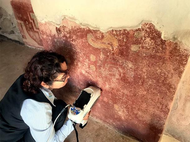 En esta imagen, un investigador está analizando el estuco de una pared en el complejo Quetzalpapálotl que resultó en la identificación de yeso, un material que nunca antes había sido identificado en Mesoamérica. (Denisse Argote Espino / INAH)