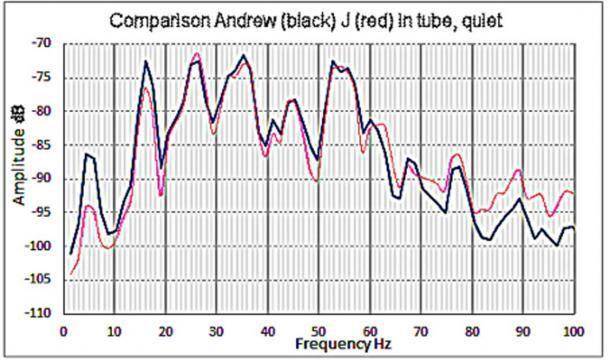 Fig. 2. Frecuencias de resonancia presentes en el pasaje del callejón sin salida cuando estaba dentro (en negro) y cuando J estaba dentro (en rojo). (Imagen: © Andrew Collins 2019)