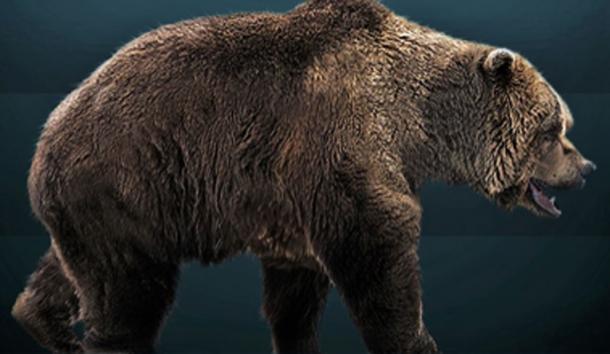 Restauración de la vida del oso de las cavernas extinto. (Sergiodlarosa / CC BY-SA 3.0)