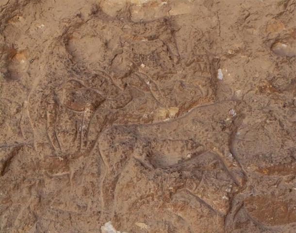 Las tallas en roca son de un tipo que no se había visto antes en la región. Foto cortesía del Ministerio de Antigüedades.