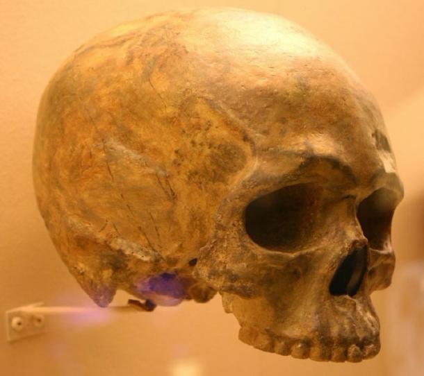 Se encontró un fósil de cráneo redondeado en Etiopía, uno de los lugares de origen humano. (Ryan Somma /CC BY-SA 2.0)
