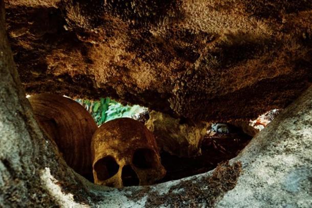 Se encontraron huesos de restos humanos junto con las copas de cráneo en el sitio. (simanlaci/ adobe)