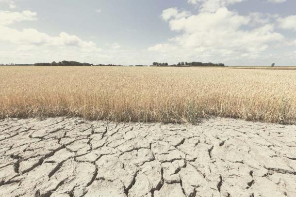 Se ha descubierto que la sequía es un factor que contribuye a la desaparición del Imperio acadio. (Bas Meelker / Adobe Stock)