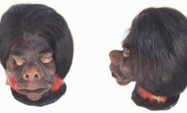Las cabezas cortadas de los rivales de los antiguos incas fueron utilizadas en rituales para mostrar su poder y disuadir a los enemigos de atacar, sugiere un nuevo estudio. (Museo Nacional de Historia Natural / Uso justo)