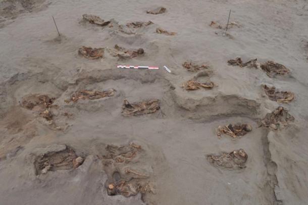 Un sorprendente número de cuerpos de niños encontrados en Perú. (© 2019 Gabriel Prieto et al / Plos ONE)