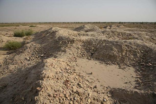 Sitio arqueológico de Mehrgarh en septiembre de 2018. (mhtoori / CC BY SA 4.0)