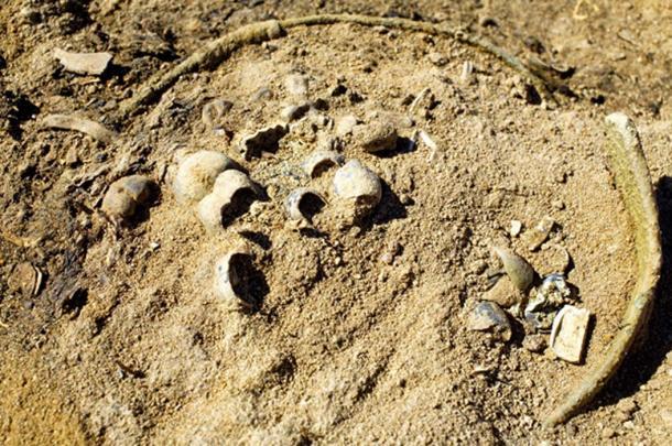 Sitio arqueológico de excavación / excavación. (Krugloff / Adobe)