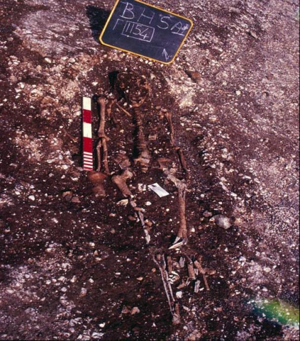 Algunos de los esqueletos fueron alterados por causa de la labranza.