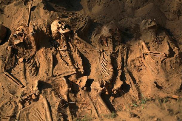 Esqueletos enterrados en el suelo, representación de los resultados de genocidios. (asayenka/ Adobe)