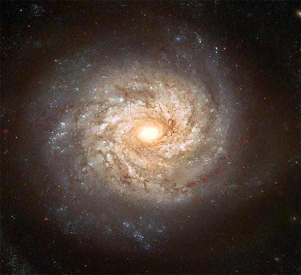 Spiral Galaxy NGC 3982 muestra numerosos brazos espirales llenos de estrellas brillantes, cúmulos de estrellas azules y carriles de polvo oscuro. (BevinKacon / Dominio público)