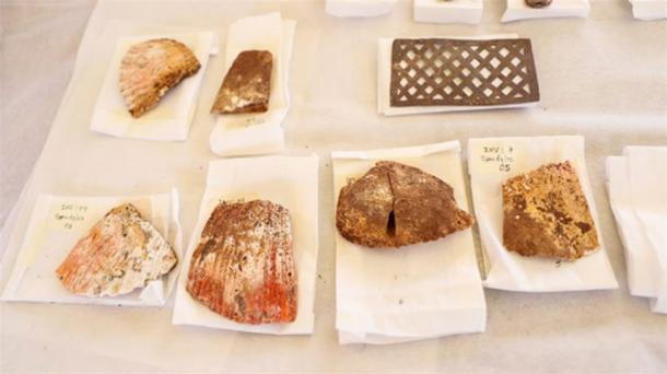 Conchas de Spondylus y una pequeña lámina de plata incluidas en la ofrenda de Wari. (Andina)