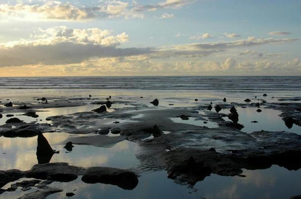 El bosque prehistórico sumergido en la Playa de Borth, Gales.