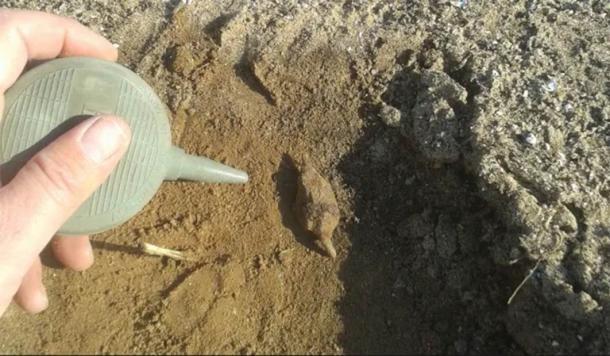 El Dr. Lewis inspeccionó el sitio del campo de batalla propuesto con un detector de metales y descubrió puntas de flecha y otros objetos de metal de la era correcta. (Rafael (Rafi) Lewis)