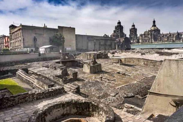 El bajorrelieve del águila real fue descubierto durante las excavaciones en el Templo Mayor en el centro de la Ciudad de México. (Bill Perry / Adobe Stock)