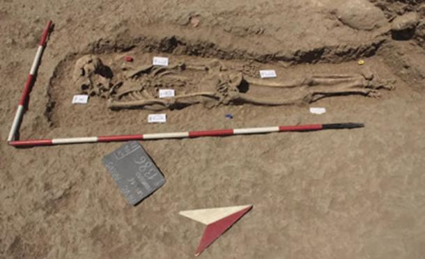 La antigua víctima de asesinato fue descubierta en una fosa común. (Anagnostis Agelarakis / Adelphi University)