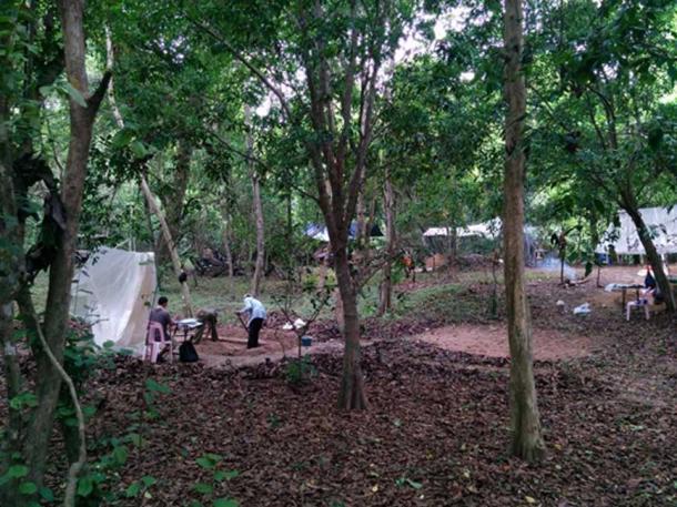 El equipo del autor, excavando montículos de ocupación que rodean el templo de Angkor Wat. Aunque esta área ahora está cubierta de árboles densos, en el pasado habría habido casas en estos montículos. (Alison Carter / CC BY-SA 4.0)