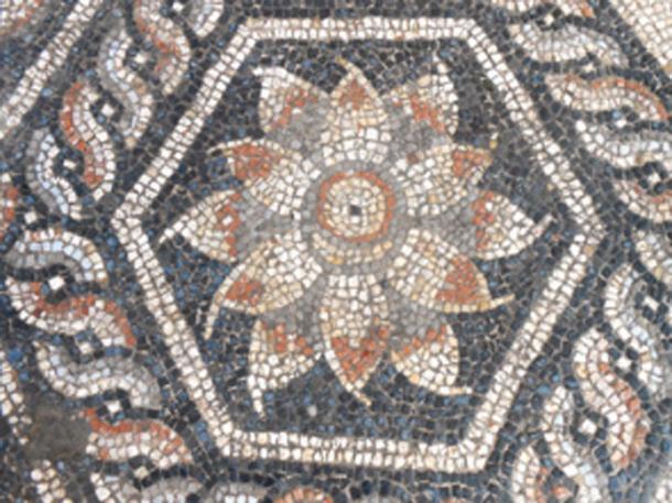 El mosaico tenía elementos distintivos únicos al estilo romano-egipcios. (Ministerio de Antigüedades / Facebook)