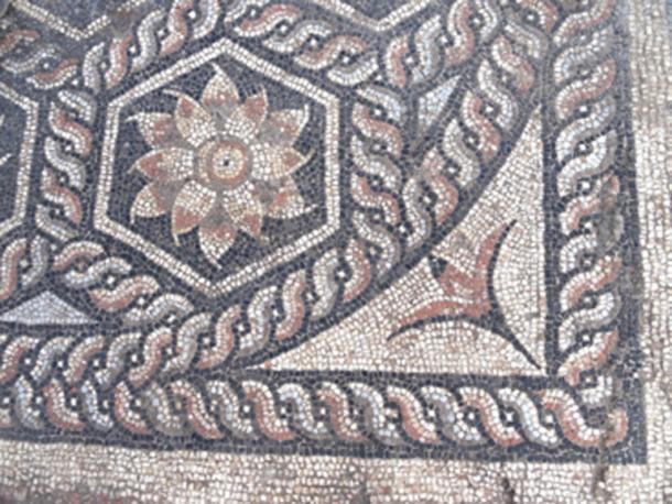 El mosaico incluía muchos diseños florales. (Ministerio de Antigüedades / Facebook)