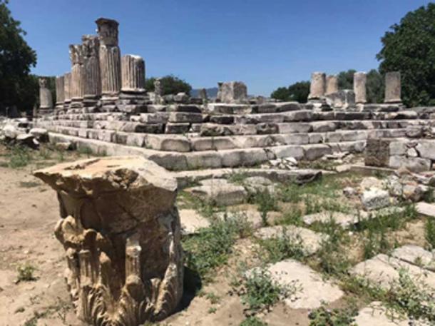 Las ruinas del santuario de Lagina Hécate en el camino sagrado. (Bilal Sogut/ Facebook)